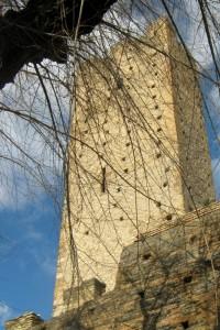 torre montanara 2