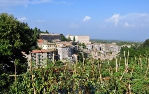 Caprarola - VT (Panorama)