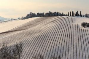 Il Piubello e la neve