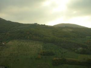 Montecassiano - Panorama III