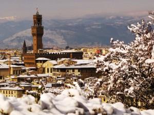 Una Firenze innevata vista dietro un bianco cespuglio