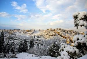 Collina del forte Belvedere panorama