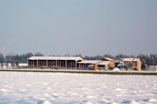 San Secondo Parmense - Riparati dalla Neve