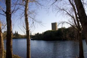 La torre sul lago