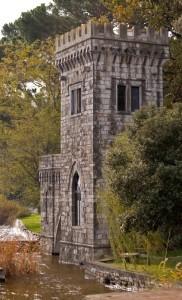 la torre del lago di Massaciuccoli