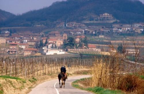 Cavagnolo - Cavagnolo a cavallo