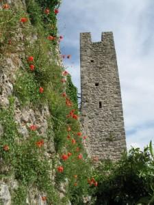 A primavera le mura di Vico nel Lazio si vestono di fiori