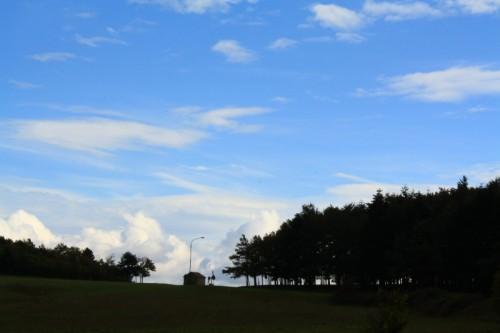 Avigliano - alberi e nuvole