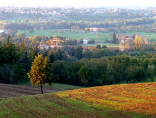 Albinea - Vista sulle colline reggiane