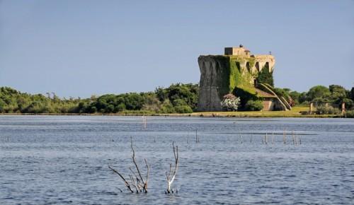 Capalbio - Torre di Buranaccio - il guardiano del lago