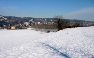 Prima neve a Villarbasse