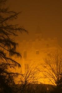 Immerso nella nebbia