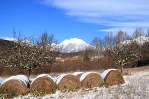 Panorama del monte Teverone