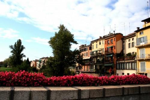 """Parma - Lungo il """"Parma"""""""