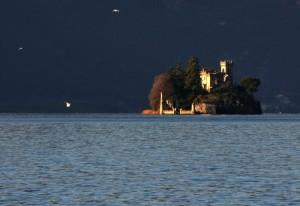 Gabbiani attorno all'isolotto Loreto