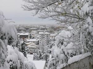 Scandicci sotto la neve (2)