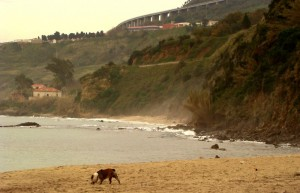 La spiaggia di Vibo Marina