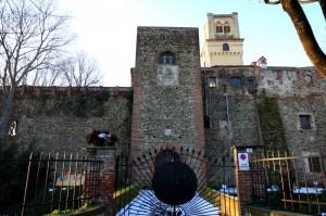 Rivalta di Torino - il Castello