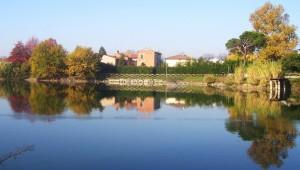 Quel ramo sul lago di Agliana..