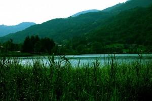 Il lago in estate