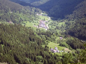 Pace tra prati e boschi