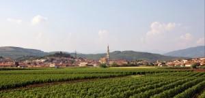 Monteforte d'Alpone - Panorama
