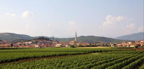 Monteforte d'Alpone - Monteforte d'Alpone - Panorama