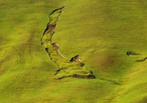 IL 2009 è andato,un anno di terremoti,alluvioni e frane ma la natura ci indica nuove direzioni.RISPETTIAMOLA