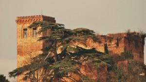 Castello di Arignano