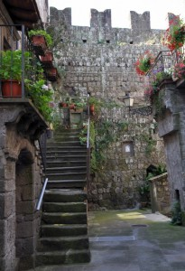 Le Mura Viste da Dentro Vitorchiano