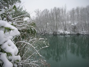 Rive del fiume Brenta sotto la neve - II