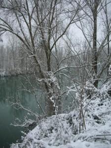 Rive del fiume Brenta sotto la neve - III