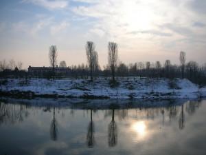 Rive del fiume Brenta sotto la neve - IV