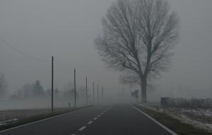 un banco di nebbia nella via per casa