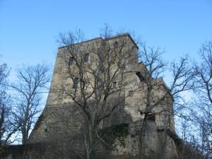 Il castello si nasconde tra gli alberi