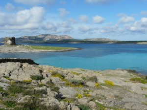 Il mare di Stintino, Torre pelosa, l'Isola Piana e l'Asinara