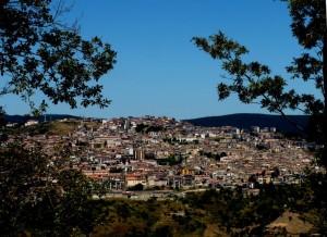 S.Giovanni in Fiore: panorama