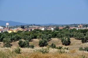 Canino - VT (Panorama E)