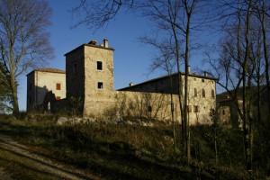 il castello di Albana avvolto dal bosco