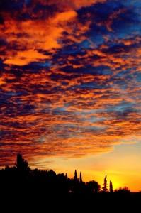 Alba a Cipressa