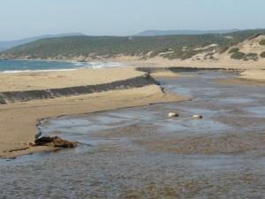 Le famose dune di Piscinas
