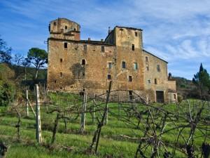 Toiano - Castello di palazzaccio - n.3