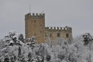 Castello di Baiso