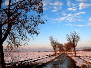 Parco Agricolo della Cavallera