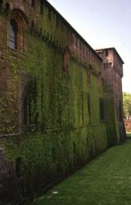 una vellutata verde protezione del tempo