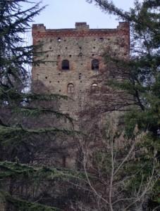 la torre fa capolino tra gli alberi