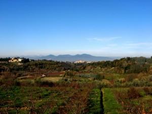 Panorama su Lari