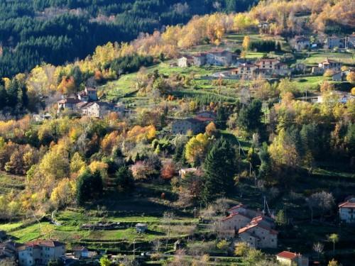 Montemignaio - Le foglie hanno cambiato colore