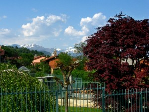 Nel Canavese