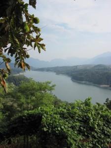Da dietro le castagne…il lago di Santa Giustina